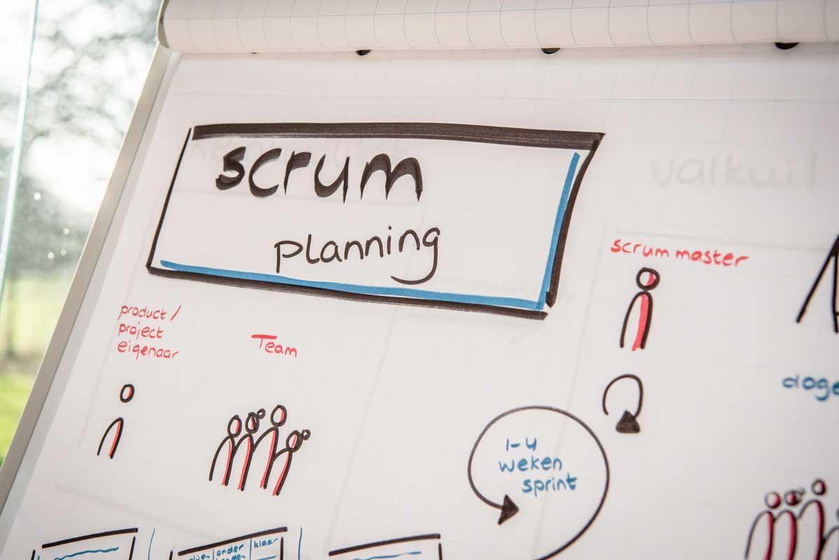 De Meer Consultancy & Trainingen - Interim management